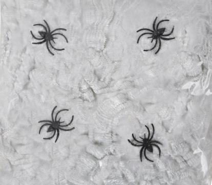 Ämblikuvõrk koos ämblikutega, valge (56 g)