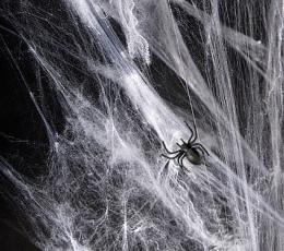Ämblikuvõrk, valge (60 g) 1
