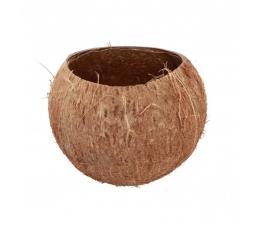 """Dekoratiivne anum """"Kookospähkel"""" (13x10 cm)"""