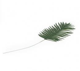 Dekoratiivne palmileht koos varrega (35x21 cm) 1