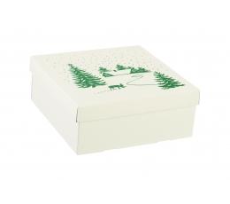"Karp kaanega ""Lumi"", madal (30X30X12 cm)"