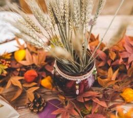 Kimp kuivatatud nisu (70 g./60 cm) 1