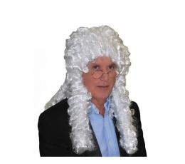 Kohtuniku parukas