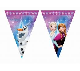 """Lipuvanik """"Frozen"""" (9 lippu)"""