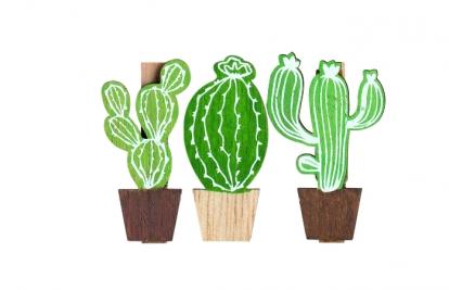 """Lõksud-dekoratsioonid """"Kaktused"""" (6 tk.)"""