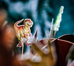 """Tikud / kaunistused """"Dinosaurused"""" (20 tk./12 cm) 1"""