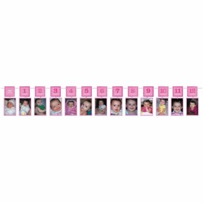 Vanik piltidele, roosa (3,65 m)