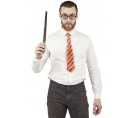 Võluri komplekt (lips, prillid, võlukepp)